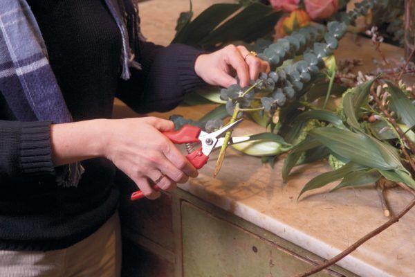 Felco 310 Fruit- en bloemenschaar 2